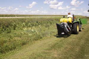 Weed Control Spraying